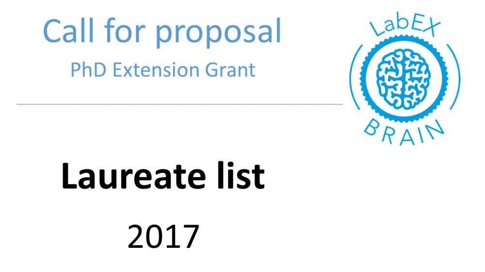 PhD extension Grant 2017